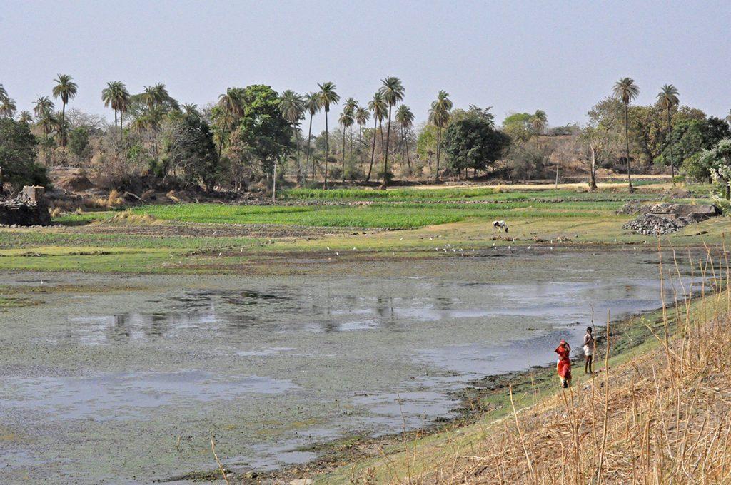 Samal - Rajasthan - Inde © Sita
