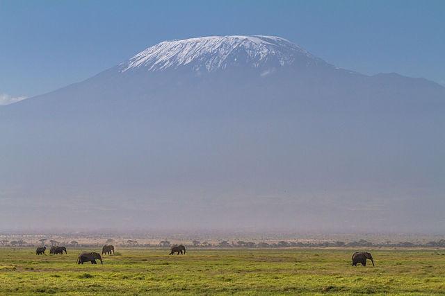Première fois en Tanzanie : top 4 des activités à ne pas manquer